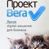 Проект Вега. Интернет-маркетинг на 100%.