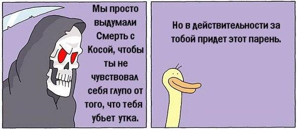 http://cs412123.vk.me/v412123009/2c5c/kgZqCvtgBLY.jpg