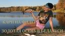 Ловля карпа на фидер. Платная рыбалка и золотая осень. База Бобровой хатка (16.10.18)