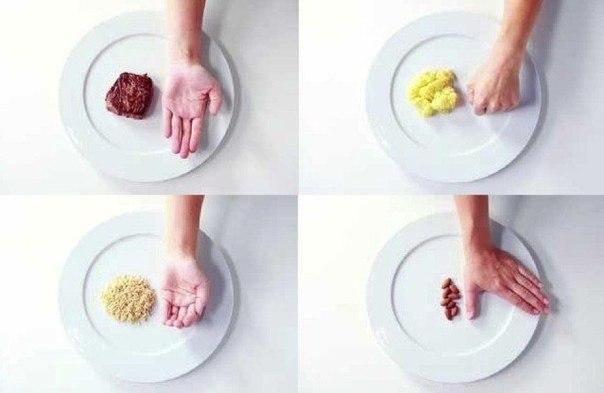 Как определять правильный размер порций еды при помощи «правила рук»?