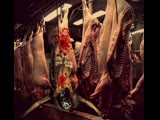 il Body - frattaglie umane live Eterotopia 05-04-19