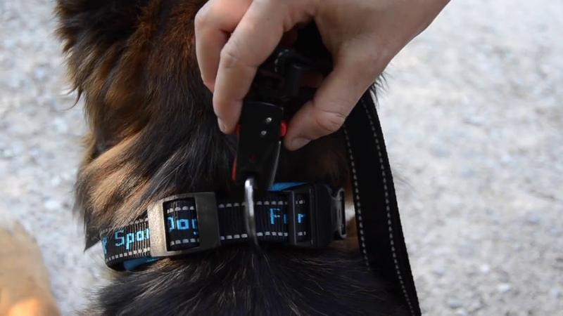 Ferplast Sport Dog Matic инновационный автоматический карабин с магнитным механизмом