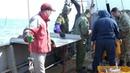 51 тонну живого краба пытались вывезти дальневосточные контрабандисты из Приморья в Китай