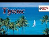 Впечатления об отдыхе в Тунисе - лучшие пляжи, отели, достопримечательности