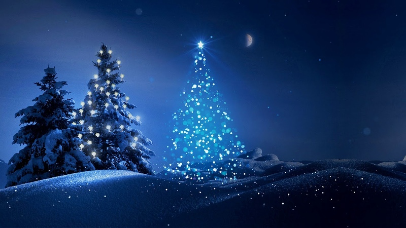 HD Футаж Новогодняя елка