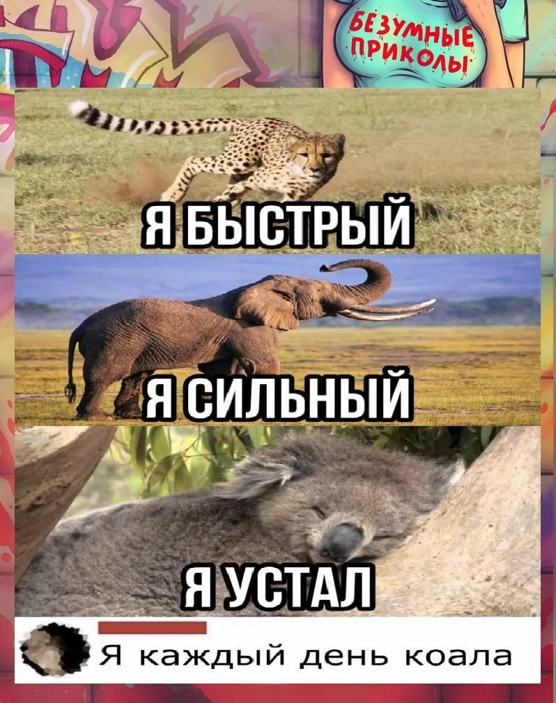 Когда сказали показать внутреннего зверя))