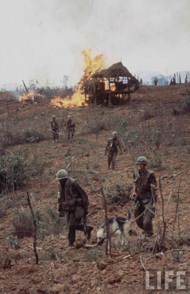 guerre du vietnam - Page 2 9mm8UbnUHBI