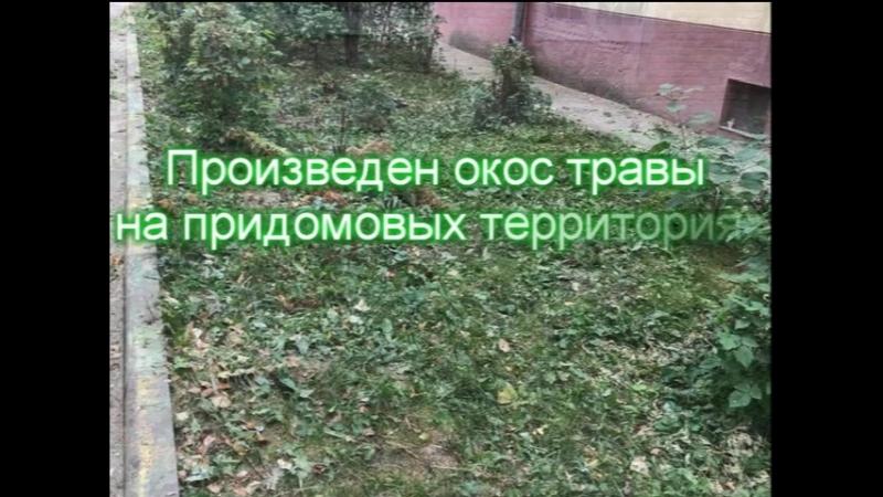 Окосили траву на улице Менделеева, в центре Воскресенска мупуправлениедомами воскресенскийрайон жкхвоскресенск окостравывоск
