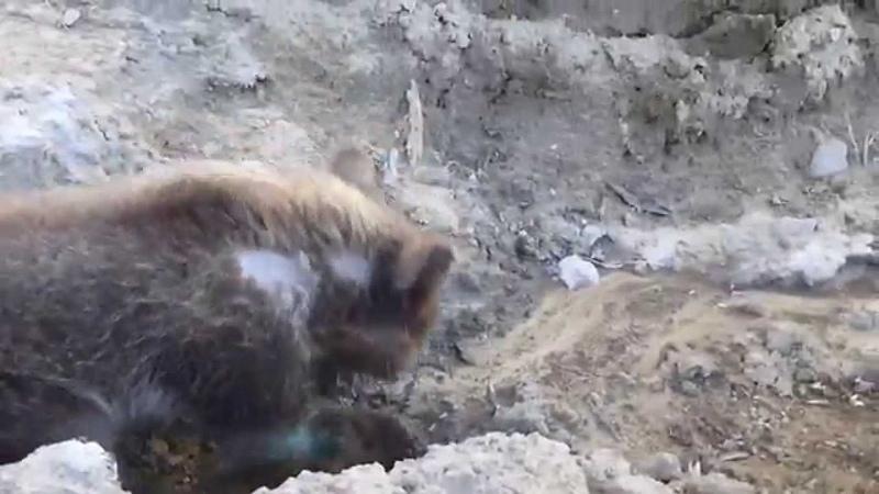 Обследуем яму