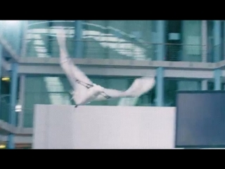 Летучая мышь - робот....как настоящая 😯