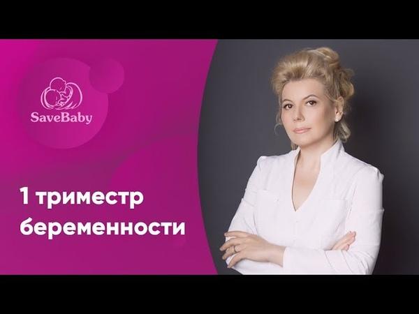 1 триместр беременности. Елена Никологорская. Акушер-гинеколог. СПб