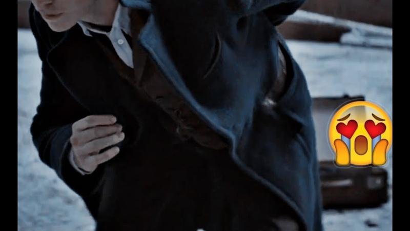 Fantastic Beasts crack 1 : Newt's hips dont lie