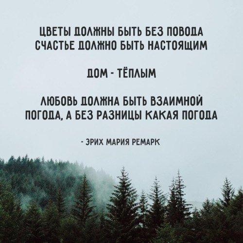 https://pp.vk.me/c543108/v543108859/fd34a/TNOHWznmGEo.jpg