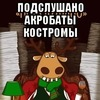 Подслушано Акробаты Костромы