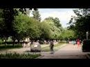 Національний проект Відкритий світ Виноградівська гімназія Закарпатської області