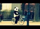 "WWF : ""Save the christians!"" ( Coldplay Paradise - Panda parody)"
