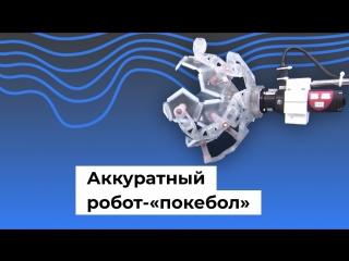 Аккуратный робот-«покебол»