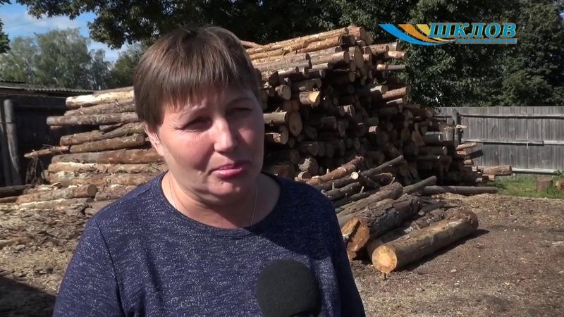 Шкловский райтопсбыт предлагает населению и организациям торфобрикет и дрова