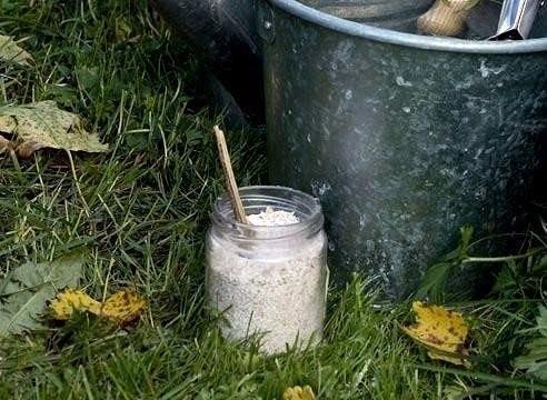 Как понизить или повысить кислотность почвы.