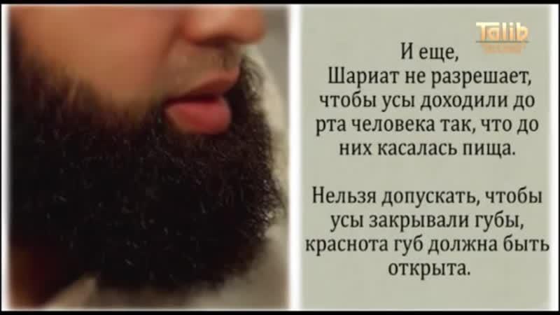 О бороде - Абдулгафуриль Мухаммад хаджи [Taalib.ru]
