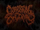 Cerebral Ectomy - Decomposition Of Consciousness