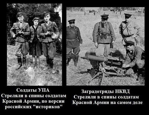 Чествование ветеранов национально-освободительного движения необходимо не только для них самих, но и для тех воинов, которые сейчас воюют за Украину, - Вятрович - Цензор.НЕТ 3670