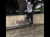 Flip Skateboards в Instagram: