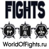 World of Fights