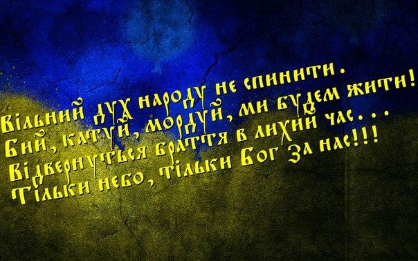 Совместные учения Украины и НАТО стали бы сдерживающим фактором для РФ в момент оккупации Крыма, - Парубий - Цензор.НЕТ 8223