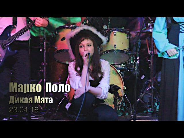 Марко Поло - Дикая Мята (Money Honey 23.04.2016)