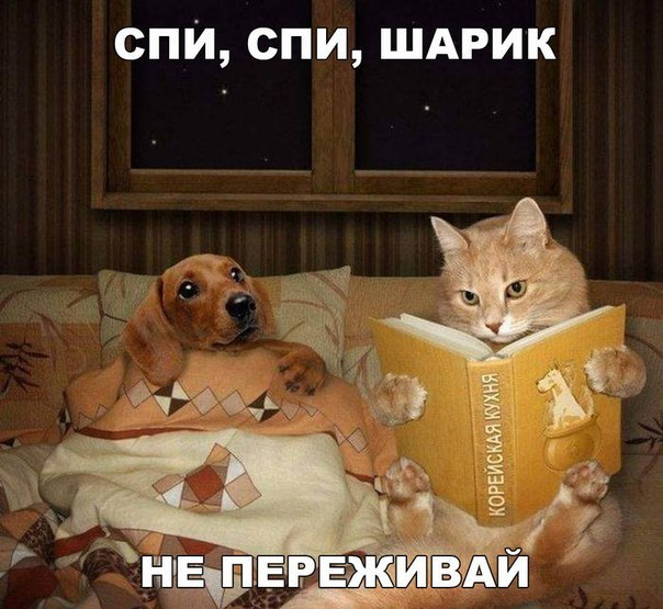 https://pp.vk.me/c635104/v635104343/2b89/dBfOAa9_9TI.jpg