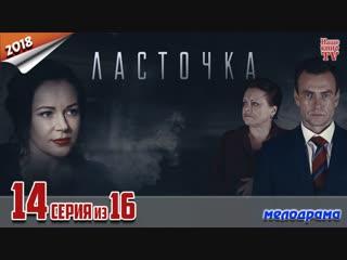 Ласточка / 2018 (мелодрама). 14 серия из 16