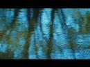 Сфера колдовства / La clé des champs (2011) Режиссеры: Клод Нуридзани, Мари Перену