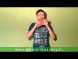 ВИДЕО УРОК по игре на флейте Пана в До