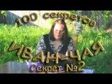 100 секретов иван-чая СЕКРЕТ 2