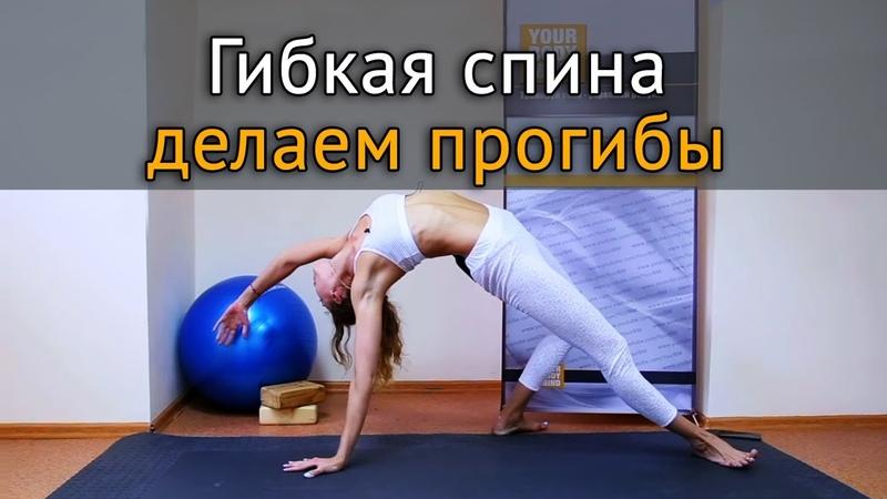Упражнения для гибкости спины как разработать прогиб