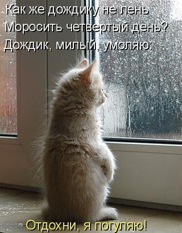 http://cs402816.userapi.com/v402816537/874/SSAL216_vdg.jpg