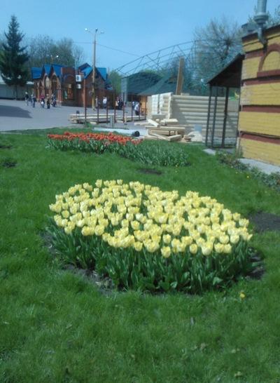 Надежда Карелина, 28 апреля 1985, Киев, id7023777