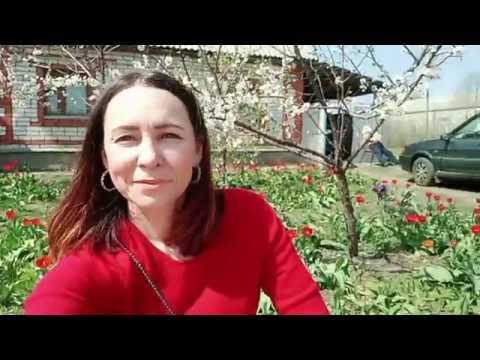 Погода климат весна в городе Лиски 25 апреля 2019г Жилой дом в г Лиски Воронежская область