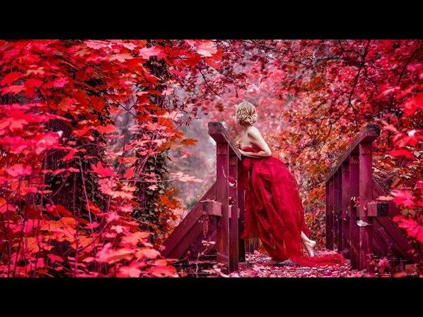 Найти свою вторую половинку I Закон притяжения I Частоты идеальной любви