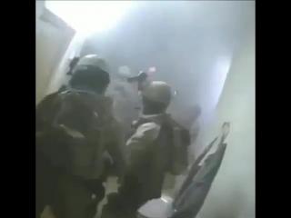 Anti Terror Forces | ATF
