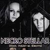 Necro Stellar, Pray Project l l 22 ноября (Мск)