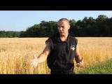 Как отжиматься с хлопком за спиной и колесо Street Workout.mp4
