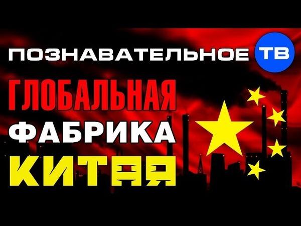 Почему Китай сделали глобальной фабрикой Познавательное ТВ Артём Войтенков
