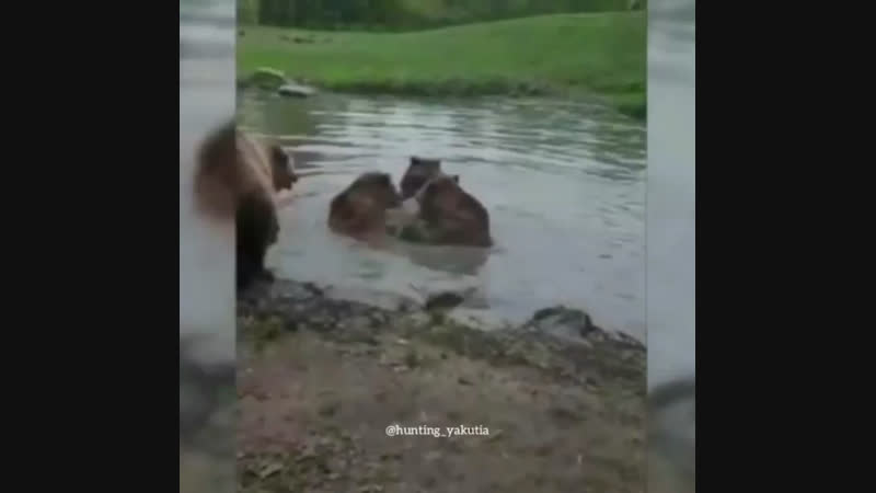 ❗️Стенка на стенку💪 Медведи побеждают❗️