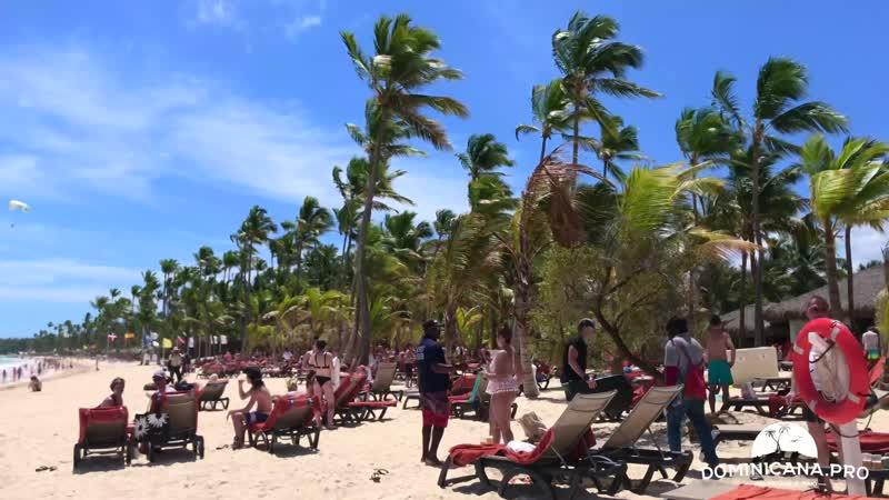 Пляж отеля Occidental PUNTA CANA Апрель 2019