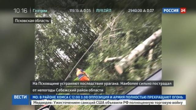 Новости на Россия 24 • Ураган в Псковской области: упавшее дерево раздавило палатку с подростком