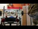Один рабочий день из жизни атлетического клуба БАЗЫ ТРЕНЕРОВ GOOD LIFT- Острякова 13А