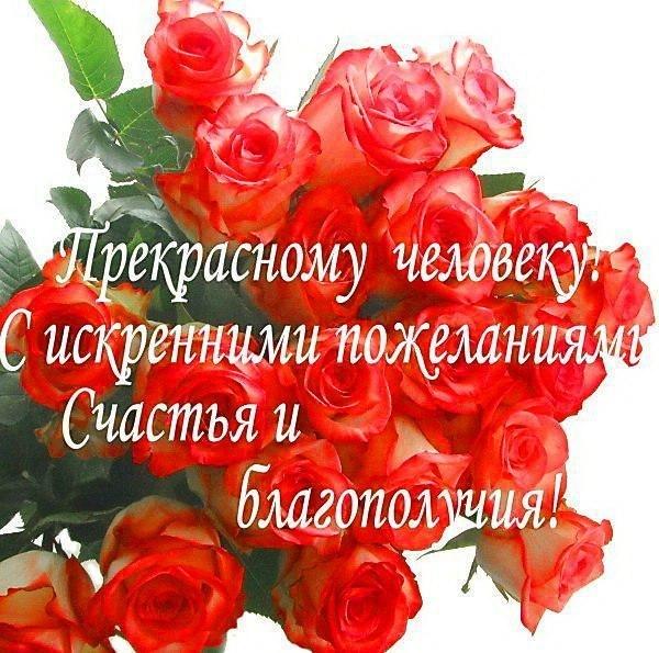 http://cs616929.vk.me/v616929907/68ee/r-Qqb5NE8WU.jpg