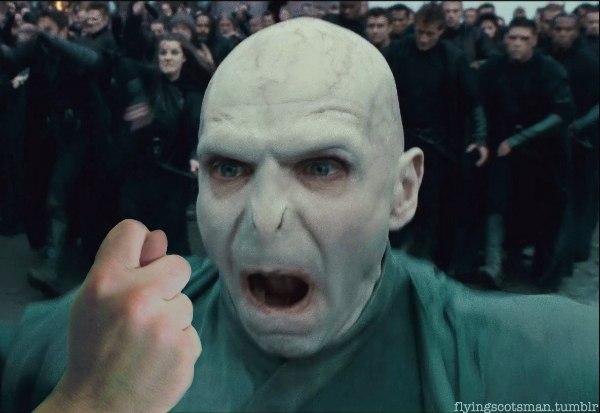 Гарри поттер и воландеморт смешные картинки